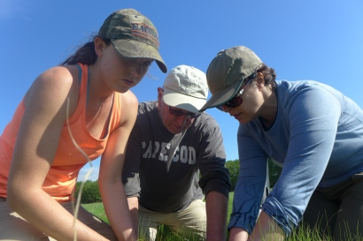 Working with Logan Science Journalism Fellows to collect invertebrate samples, Plum Island, MA (Photo by David S. Johnson)